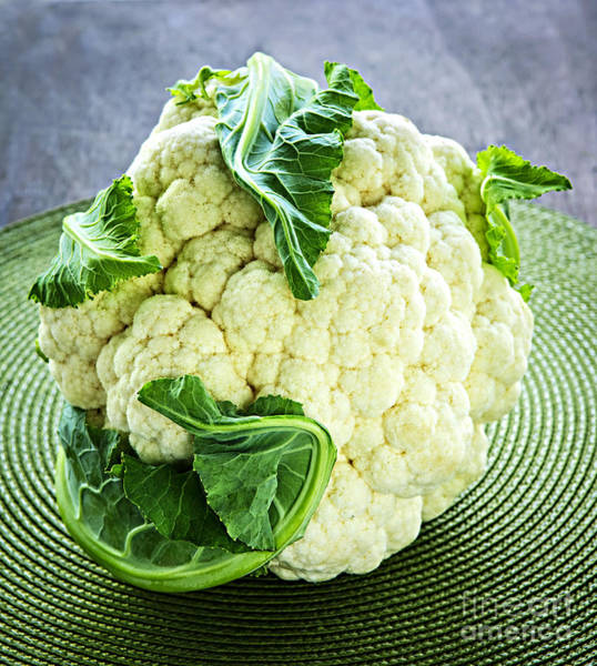 Green Vegetable Photograph - Cauliflower by Elena Elisseeva