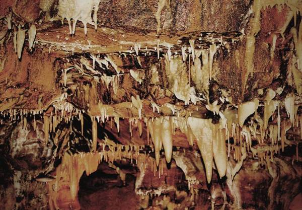 Stalagmite Photograph - Cavern Beauty by Dan Sproul