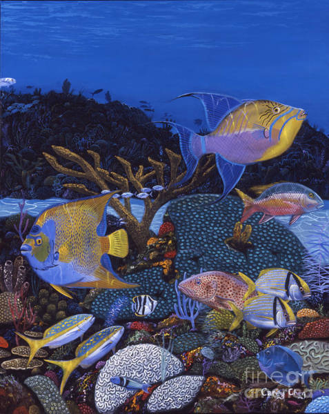 Reel Painting - Cayman Reef 1 Re0021 by Carey Chen