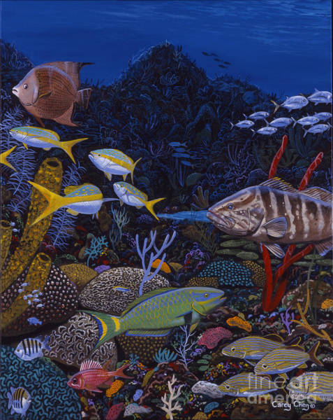 Coral Reef Painting - Cayman Reef Re0022 by Carey Chen