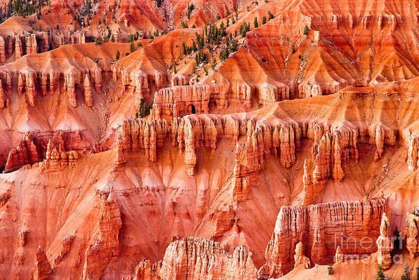 Photograph - Cedar Breaks Landscape by Mae Wertz