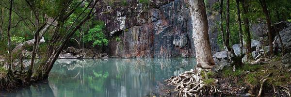 Cedar Tree Photograph - Cedar Creek by Bruce Hood