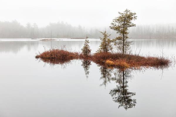 Photograph - Cedar Tree Island by Denise Bush