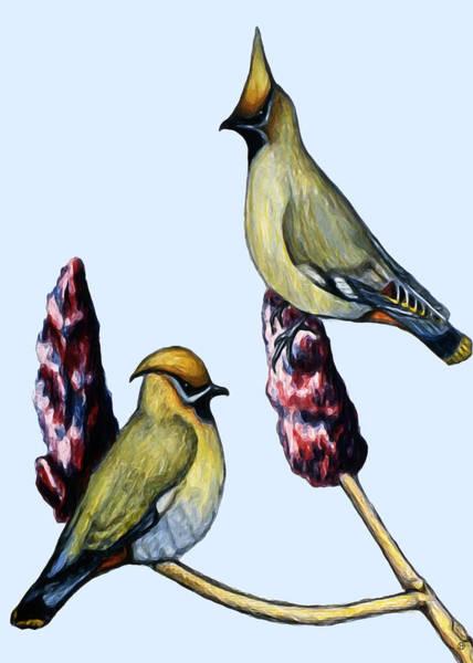 Waxwing Digital Art - Cedar Waxwings by Gary Olsen-Hasek