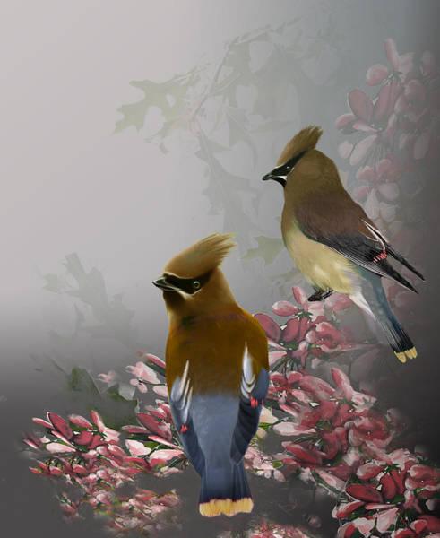 Waxwing Digital Art - Cedar Waxwings by Jeri Klein