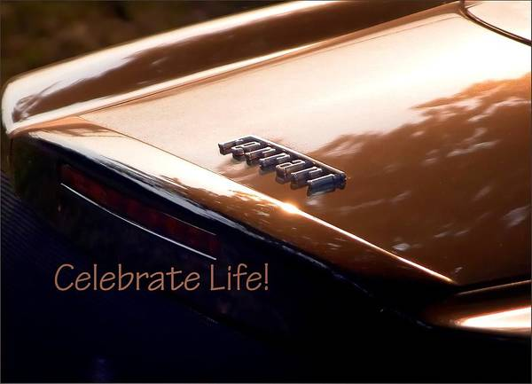 Photograph - Celebrate Life 21205 by Jerry Sodorff