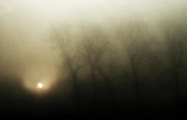 Fog Photograph - Celestial Melody To The Earth by Yvette Depaepe