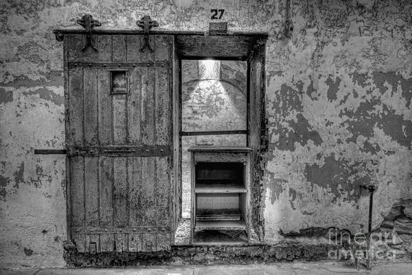D800 Photograph - Cell 27 by Michael Ver Sprill