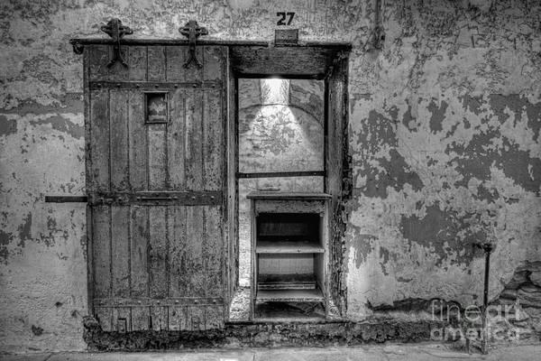 Nikon D800 Wall Art - Photograph - Cell 27 by Michael Ver Sprill