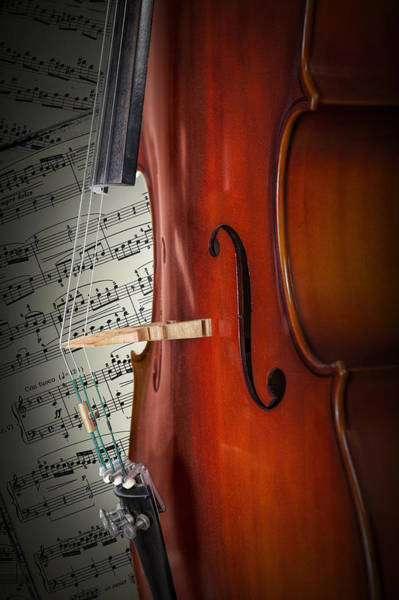 Photograph - Cello Bridge And Beethoven by Randall Nyhof