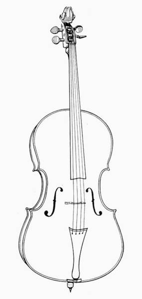Wall Art - Drawing - Cello by Granger