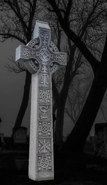 Photograph - Celtic by Guy Whiteley