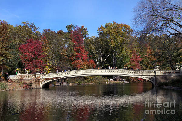 Photograph - Central Park Bow Bridge by Steven Spak