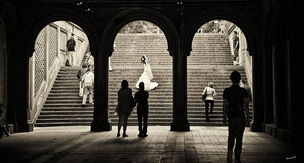 Wall Art - Photograph - Central Park Bride by Madeline Ellis