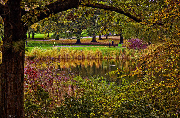 Wall Art - Photograph - Central Park In Autumn - Nyc by Madeline Ellis