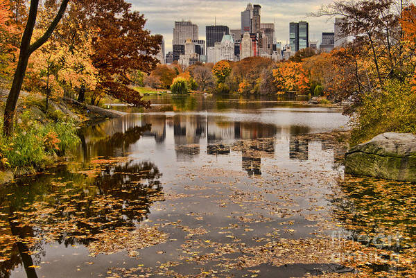 Sabine Photograph - Central Park In The Fall New York City by Sabine Jacobs