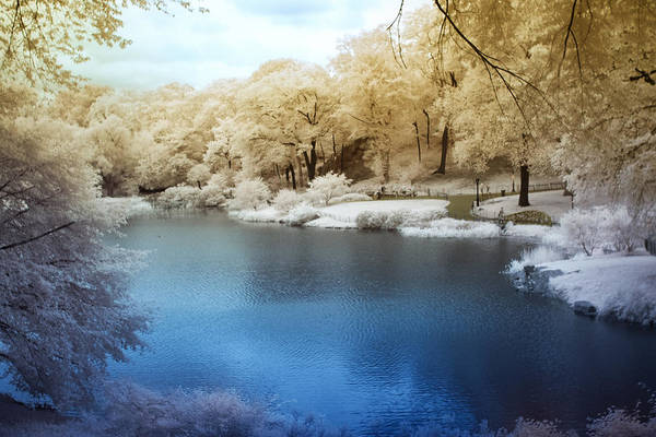 Central Park Lake Infrared Art Print