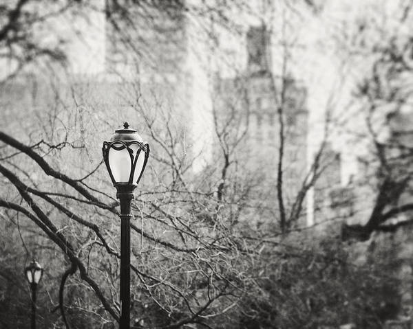 Lamppost Photograph - Central Park Lamppost In New York City by Lisa Russo