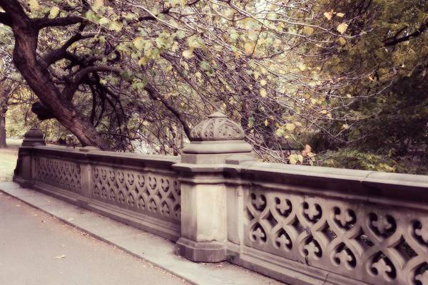 Photograph - Central Park - New York by Marianna Mills