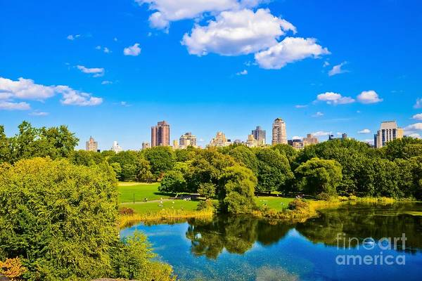 The Belvedere Photograph - Central Park View by Rebekah Wilson