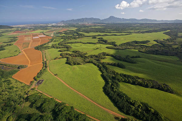 Photograph - Central Plains Kauai Aerial by Steven Lapkin