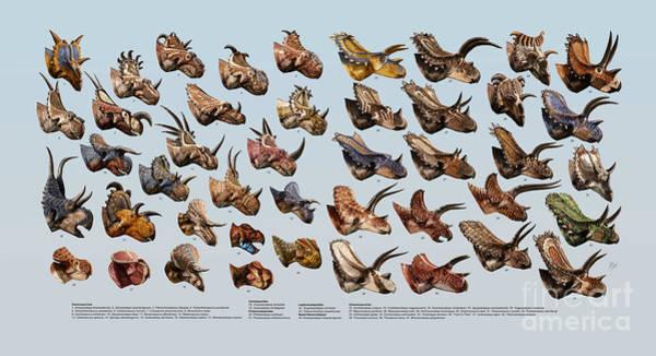Wall Art - Digital Art - Ceratopsian Cornucopia by Julius Csotonyi
