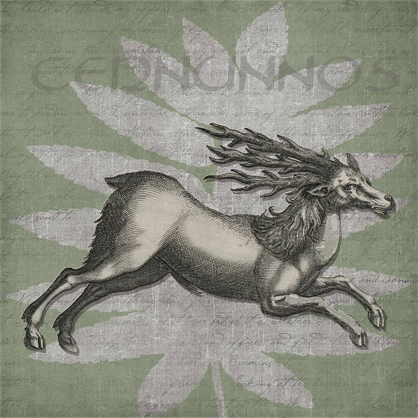 Celtic Mythology Wall Art - Digital Art - Cernunnos Lord Of The Wild Things by Kandy Hurley