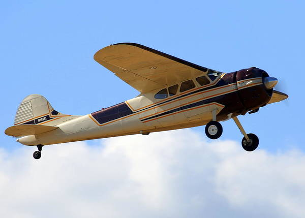 Photograph - Cessna 195a Club Fly-by N195el by John King