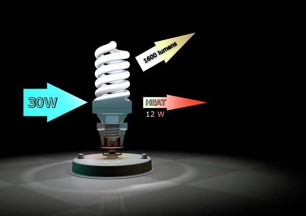 Energy-saving Wall Art - Photograph - Cfl Light Bulb Efficiency by Animate4.com/science Photo Libary