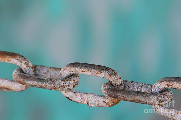 Chain Link Photograph - Chain Link by Heidi Piccerelli