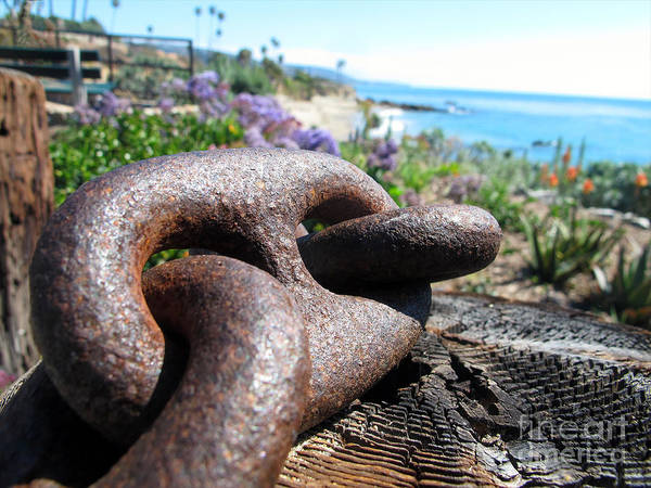 Photograph - Chain Link by Kelly Holm