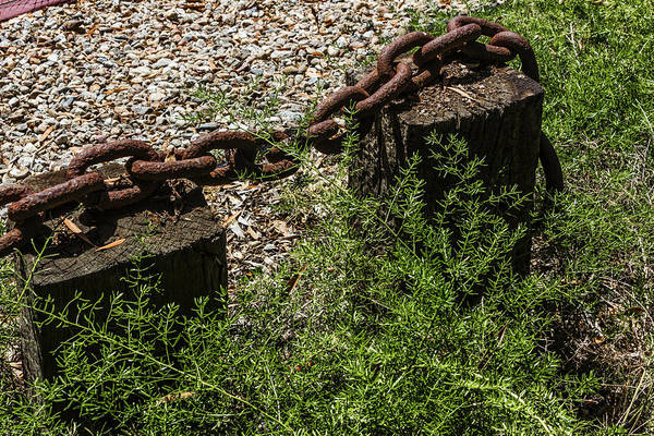 Digital Art - Chained by Photographic Art by Russel Ray Photos
