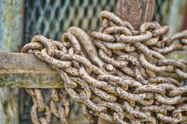 Chain Link Photograph - Chained Up by Heather Applegate