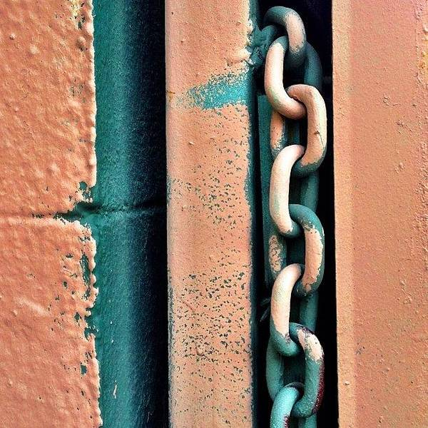 Wall Art - Photograph - Chainlink by Julie Gebhardt