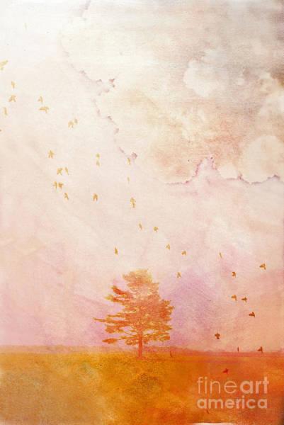 Wall Art - Photograph - Chaleur Estivale by Aimelle
