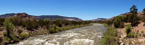Rio Grande River Photograph - Chama River A Major Tributary River by Panoramic Images