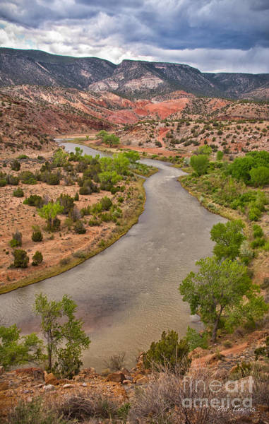 Chama Photograph - Chama River by Pat Lucas
