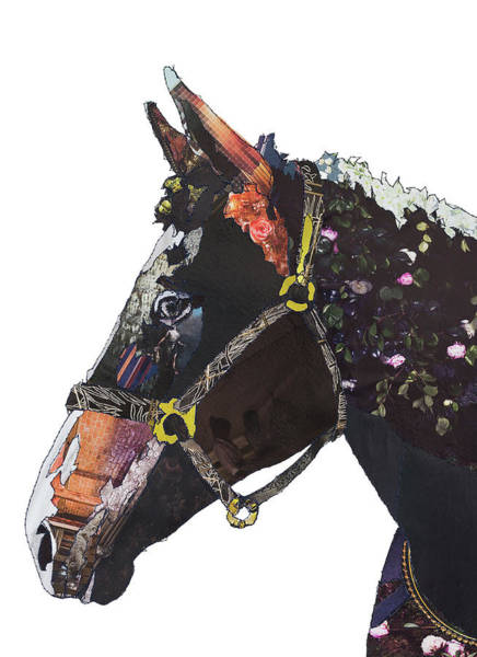 Stitch Painting - Champion The Wonder Horse by MGL Meiklejohn Graphics Licensing