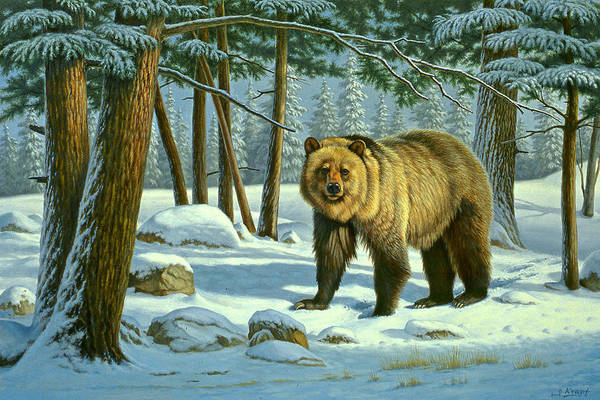 Wall Art - Painting - Chance Encounter - Grizzly by Paul Krapf