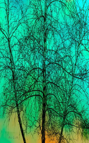 Wall Art - Photograph - Change Of Seasons by Bob Orsillo