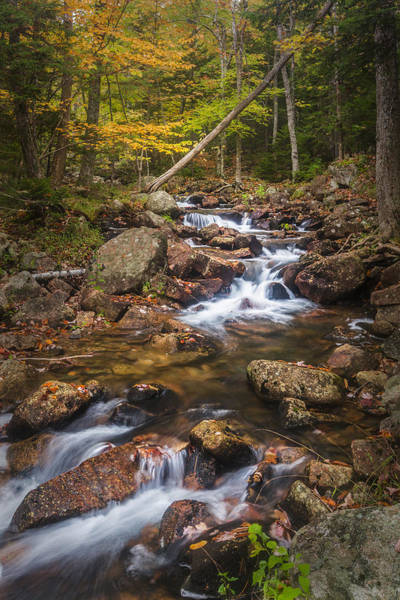 Photograph - Changes In The Water by Jon Glaser