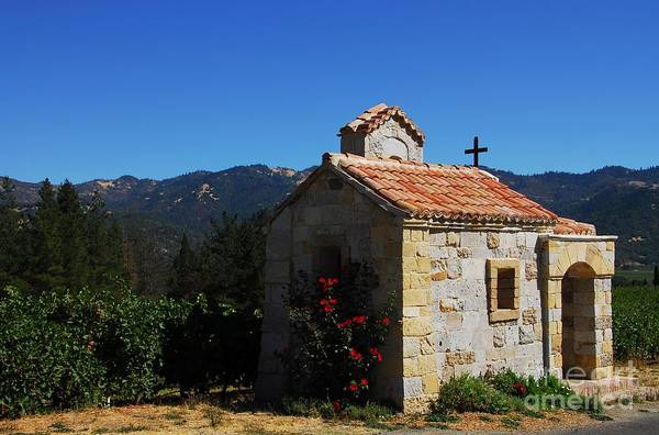 Photograph - Chapel In The Vineyard by Mel Steinhauer