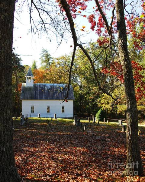 Photograph - Chapel In The Woods 2 by Mel Steinhauer