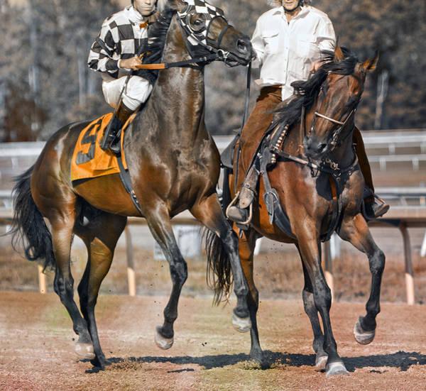 Hoof Photograph - Chaperoned  by Betsy Knapp