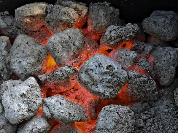 Barbeque Photograph - Charcoals by Alexander Fedin