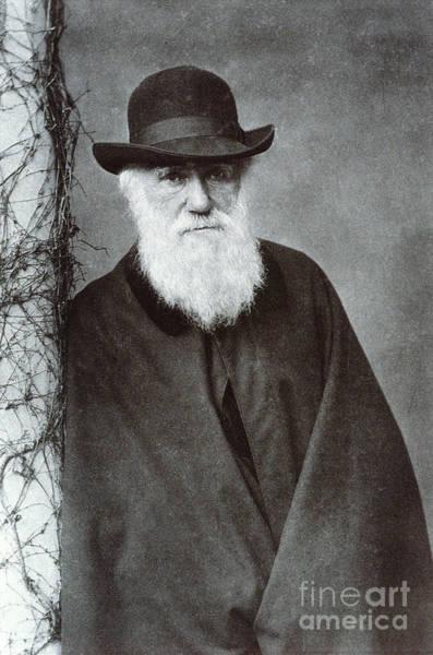 Photograph - Charles Darwin by Biophoto Associates