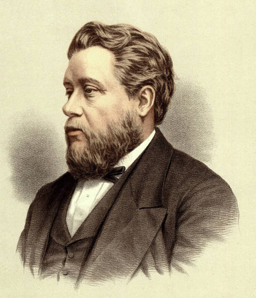 Wall Art - Drawing - Charles Haddon Spurgeon (1834-1892) by Mary Evans Picture Library