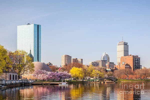 Photograph - Charles River Esplanade In Spring by Susan Cole Kelly