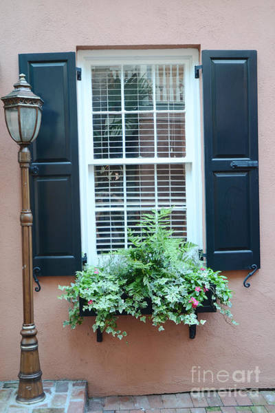 Window Box Photograph - Charleston French Quarter Window Box And Street Lamp - Romantic Charleston Window Flower Boxes by Kathy Fornal