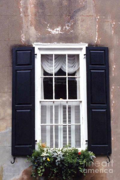 Window Box Photograph - Charleston French Quarter Window Flower Box - Charleston Architecture Black And White Window Box by Kathy Fornal